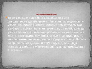 Из истории Бокшицкой школы До революции в деревне Бокшицы не было специально