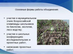 Основные формы работы объединения: участие в муниципальном этапе Всероссийск
