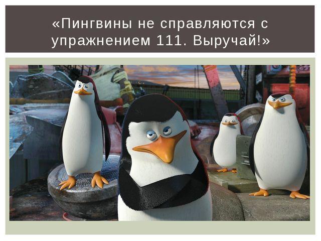 «Пингвины не справляются с упражнением 111. Выручай!»