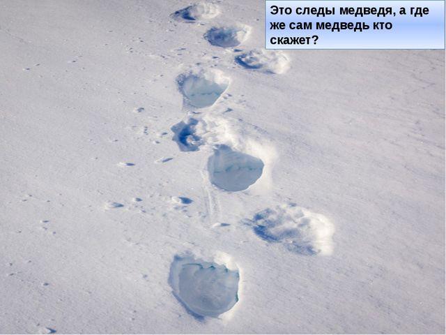 Это следы медведя, а где же сам медведь кто скажет?