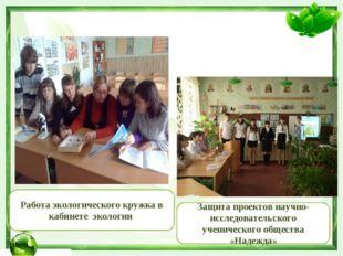 Работа экологического кружка в кабинете экологии Защита проектов научно-иссле