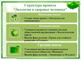 """Структура проекта """"Экология и здоровье человека"""""""