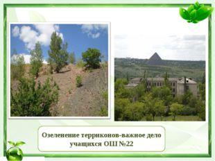 Озеленение терриконов-важное дело учащихся ОШ №22