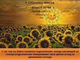 С тех пор на Земле появился подсолнечник, всегда смотрящий на Солнце (подсолн