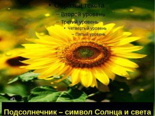 Подсолнечник – символ Солнца и света