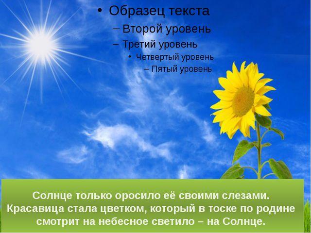 Солнце только оросило её своими слезами. Красавица стала цветком, который в т...