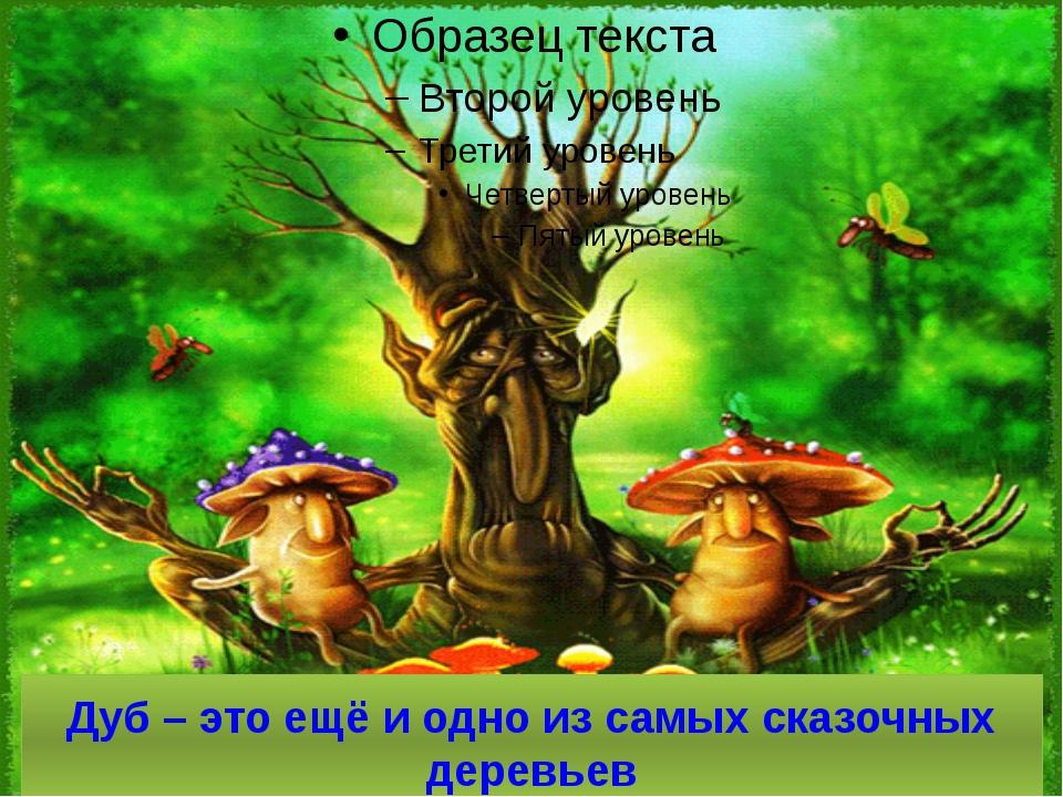 Дуб – это ещё и одно из самых сказочных деревьев