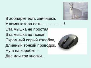 В зоопарке есть зайчишка. У компьютера есть …………….! Эта мышка не простая, Эта