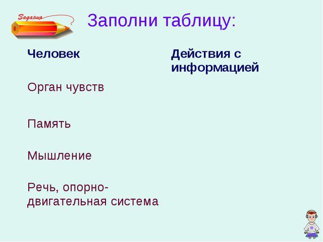 Заполни таблицу: ЧеловекДействия с информацией Орган чувств  Память Мышлен...