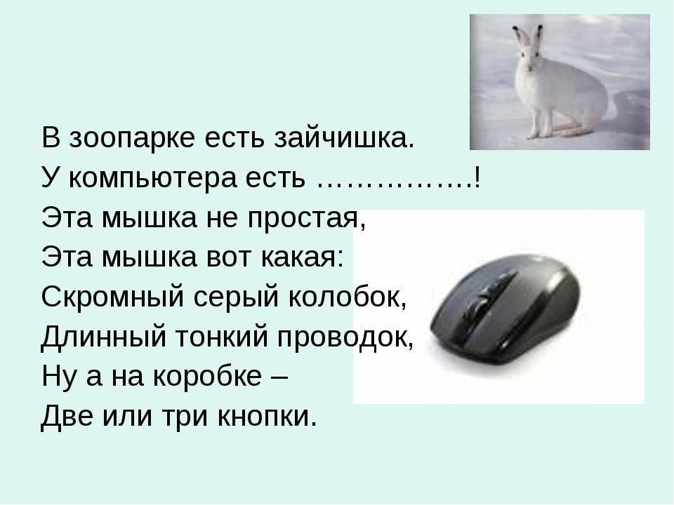 В зоопарке есть зайчишка. У компьютера есть …………….! Эта мышка не простая, Эта...