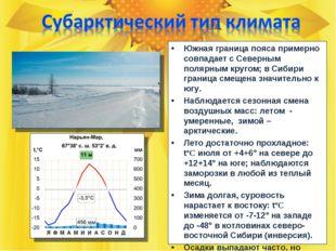 Южная граница пояса примерно совпадает с Северным полярным кругом; в Сибири г