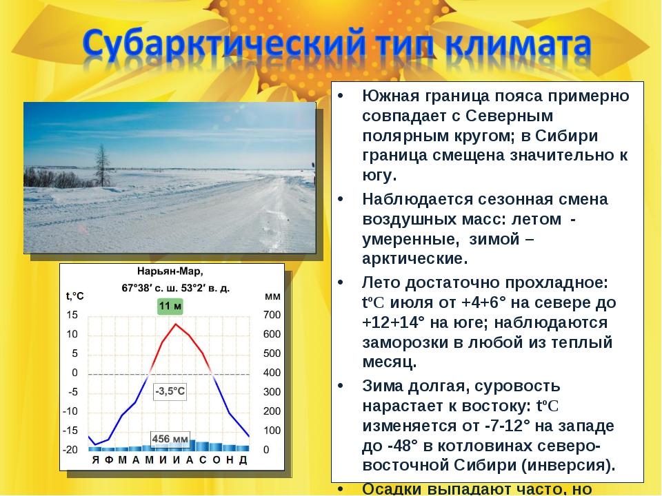 Южная граница пояса примерно совпадает с Северным полярным кругом; в Сибири г...