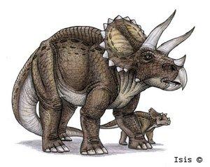Кио из этих двух динозавров прикольние???!!!=) Птеранодон=) или Трицератопс=).