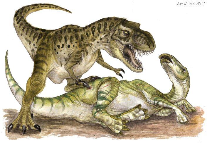 Тиранозавр Энциклопедия динозавров - Как написать реферат на 5?
