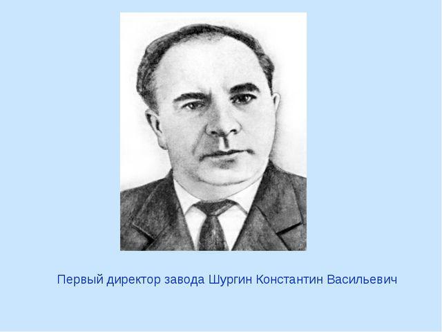 Первый директор завода Шургин Константин Васильевич