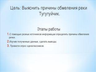Цель: Выяснить причины обмеления реки Тугутуйчик. Этапы работы С помощью разн