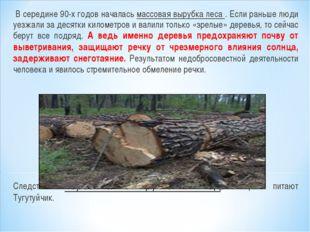 В середине 90-х годов началась массовая вырубка леса . Если раньше люди уезж