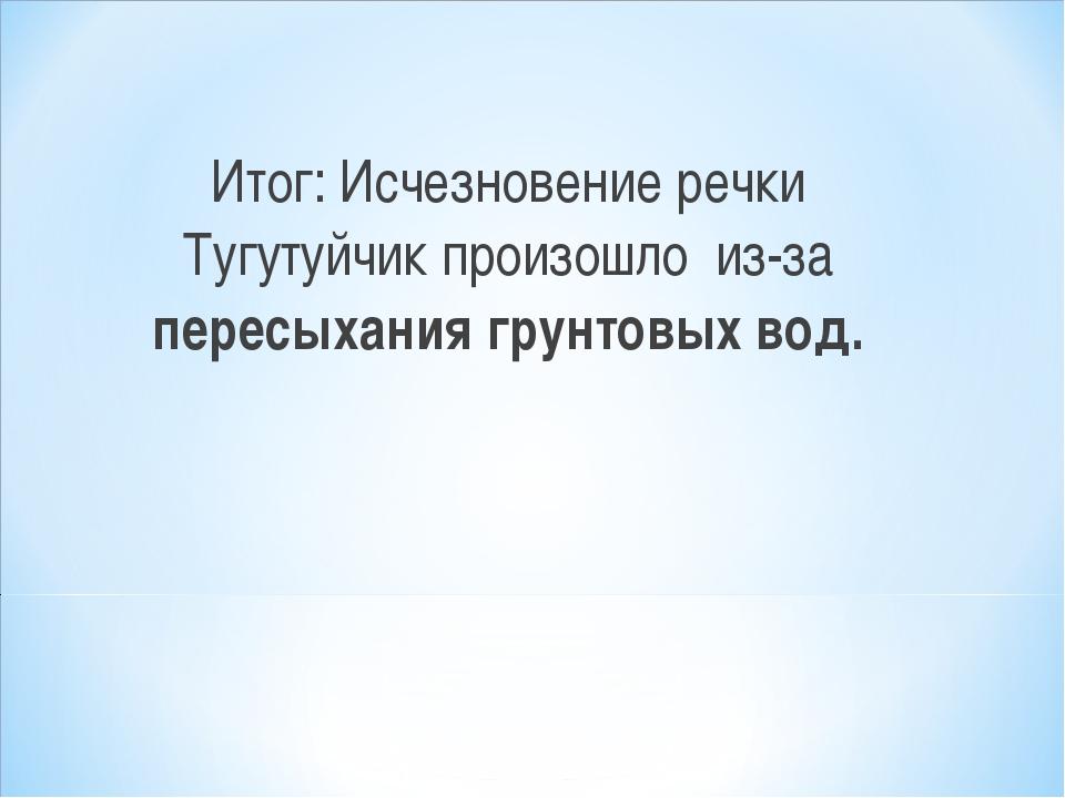 Итог: Исчезновение речки Тугутуйчик произошло из-за пересыхания грунтовых вод.