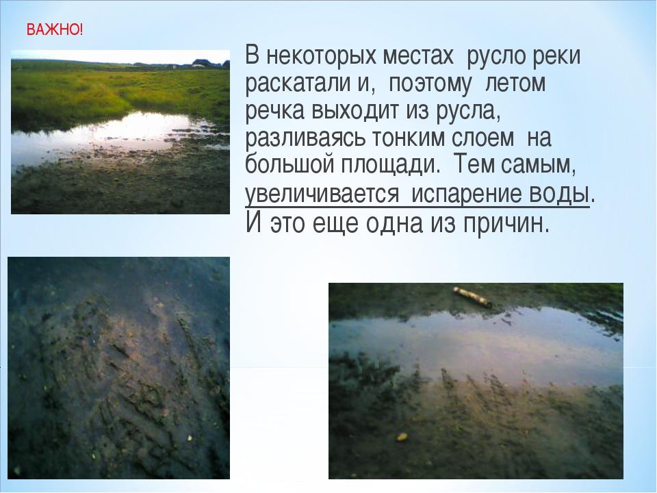 В некоторых местах русло реки раскатали и, поэтому летом речка выходит из рус...