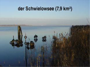 der Schwielowsee (7,9 km²)