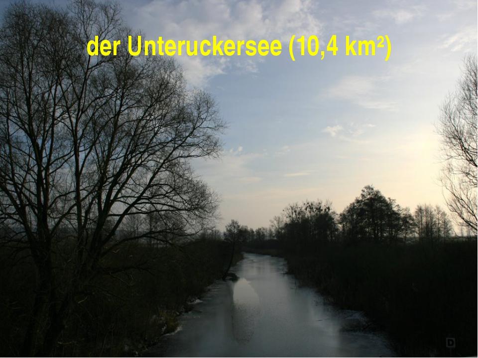 der Unteruckersee (10,4 km²)