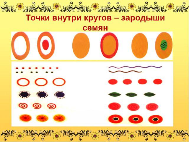 Точки внутри кругов – зародыши семян