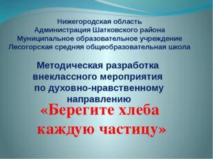 Нижегородская область Администрация Шатковского района Муниципальное образова
