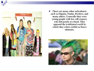 There are many other subcultures such as Hippies, Punks, Rockers, and many ot