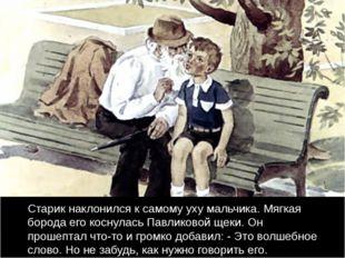 Старик наклонился к самому уху мальчика. Мягкая борода его коснулась Павлико