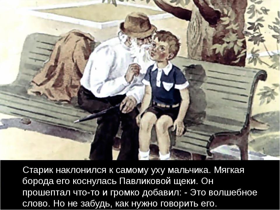 Старик наклонился к самому уху мальчика. Мягкая борода его коснулась Павлико...