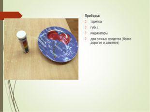 Приборы: тарелка губка индикаторы два разных средства (более дорогое и дешевое)