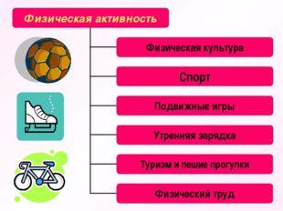 Физическая активность Физическая культура Спорт Подвижные игры Утренняя заряд