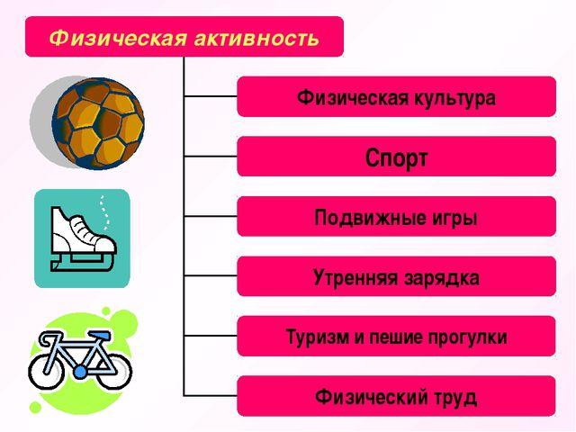 Физическая активность Физическая культура Спорт Подвижные игры Утренняя заряд...
