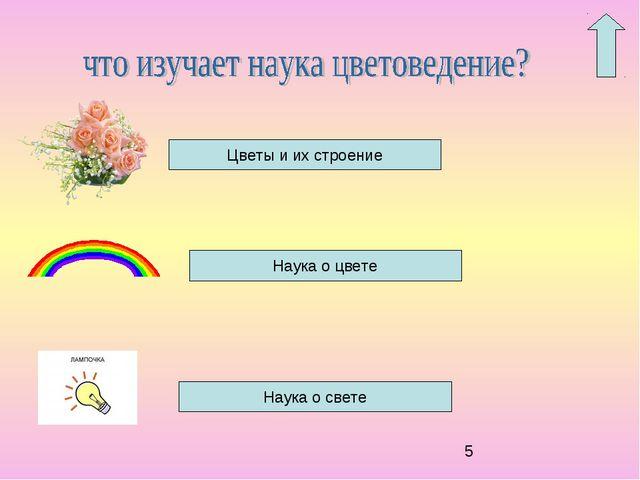 Цветы и их строение Наука о цвете Наука о свете