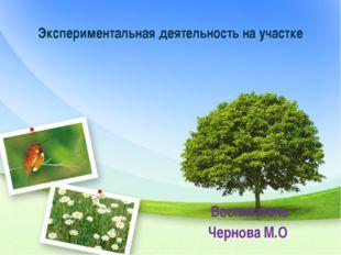 Экспериментальная деятельность на участке Воспитатель Чернова М.О.