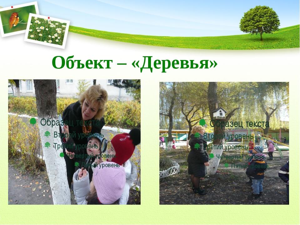Объект – «Деревья»