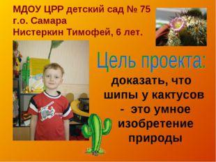 МДОУ ЦРР детский сад № 75 г.о. Самара Нистеркин Тимофей, 6 лет. доказать, что