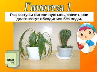 Раз кактусы жители пустынь, значит, они долго могут обходиться без воды. Опыт