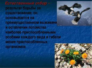 Естественный отбор - результат борьбы за существование; он основывается на п