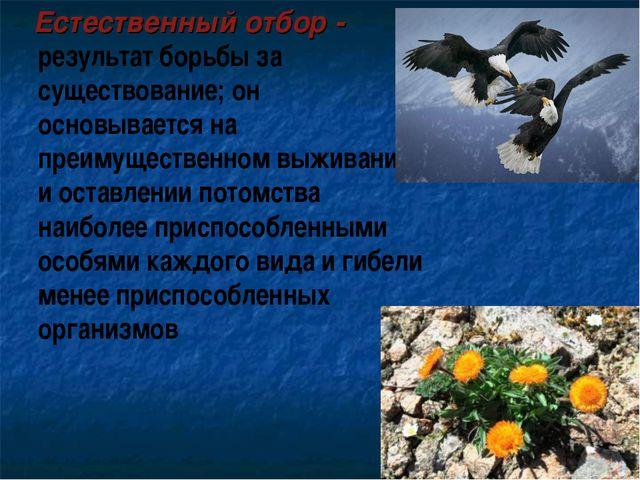 Естественный отбор - результат борьбы за существование; он основывается на п...