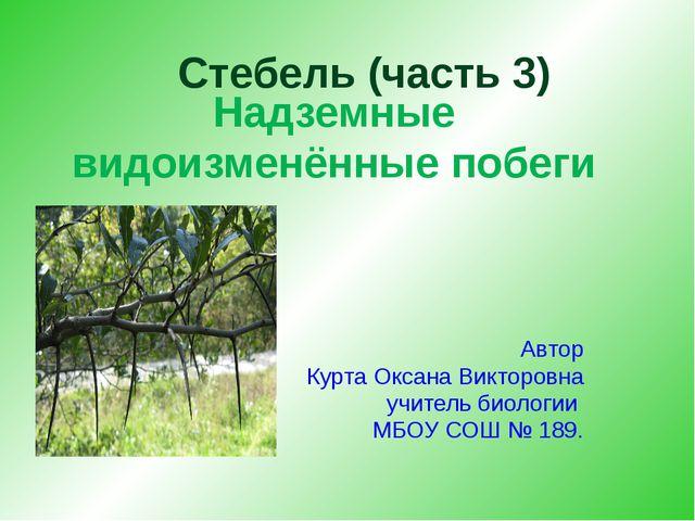 Надземные видоизменённые побеги Автор Курта Оксана Викторовна учитель биолог...