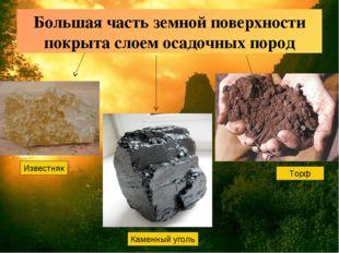 Большая часть земной поверхности покрыта слоем осадочных пород Известняк Каме