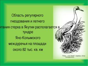 Область регулярного гнездования и летнего обитания стерха в Якутии располагае