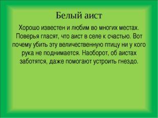 Белый аист Хорошо известен и любим во многих местах. Поверья гласят, что аист