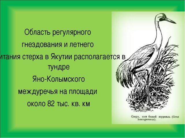 Область регулярного гнездования и летнего обитания стерха в Якутии располагае...