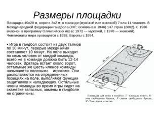 Размеры площадки Площадка 40х20 м, ворота 3х2 м; в команде (мужской или женск