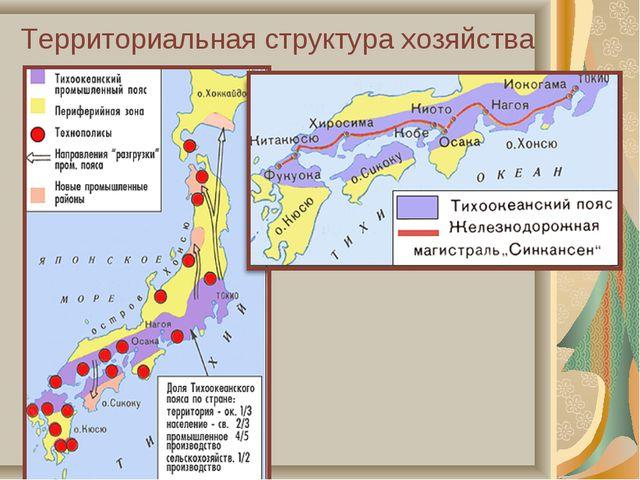 Территориальная структура хозяйства
