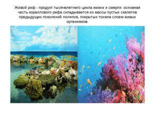 Живой риф - продукт тысячелетнего цикла жизни и смерти: основная часть коралл