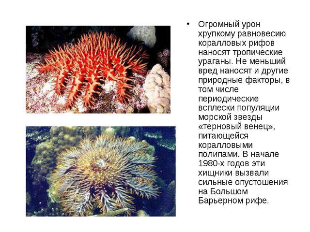Огромный урон хрупкому равновесию коралловых рифов наносят тропические ураган...