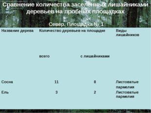 Сравнение количества заселённых лишайниками деревьев на пробных площадках Сев
